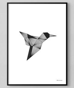 grafisk illustration af kolibri
