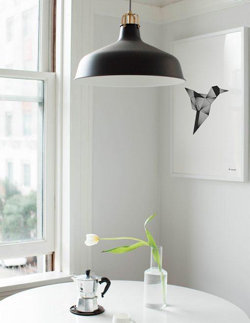 grafisk illustration af kolibri set i køkkenet