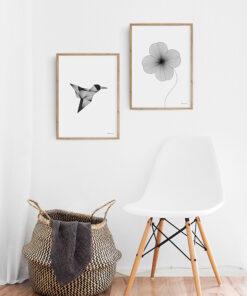 grafisk illustration af kolibri set på væg sammen med plakat af firkløver